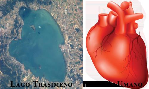 Il Lago Trasimeno ha la forma di un cuore umano.